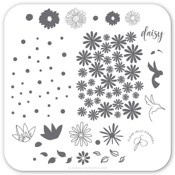 Image of Daisy Do Daisy Dont (CjS-113) Stampingplade, Clear Jelly Stamper