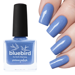 BLUEBIRD, Picture Polish