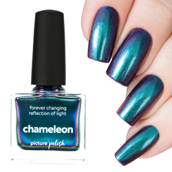 CHAMELEON, Picture Polish