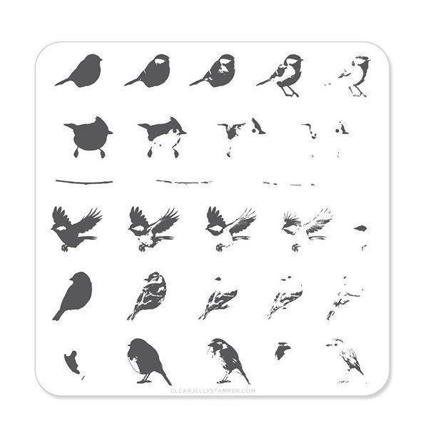 Image of   Itty Bitty Birds (CjS-30) - Stampingplade