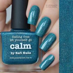 CALM Collaboration Picture Polish