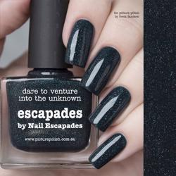 ESCAPADES Collaboration Picture Polish