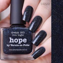HOPE Collaboration Picture Polish