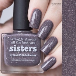 SISTERS Collaboration Picture Polish