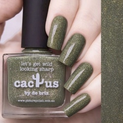 CACTUS Collaboration Picture Polish