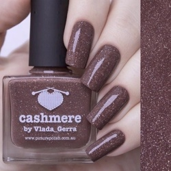 CASHMERE Collaboration Picture Polish
