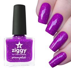 ZIGGY, Picture Polish